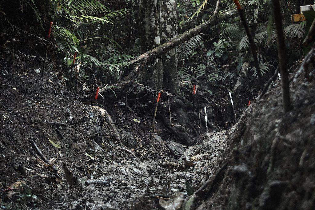 """""""Em profundidade - Campos Minados"""" [""""In Depth - Minefields""""] - Colômbia, 2015, 7 impressões com pigmento sobre papel [11 prints with pigment on paper], 109 x 73 cm, cada [each], aquisição [acquisition]"""