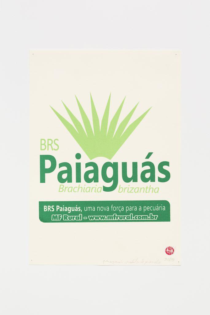 """""""Paiaguás"""", 2015-2016, serigrafia sobre papel, 42 x 29,7 cm"""
