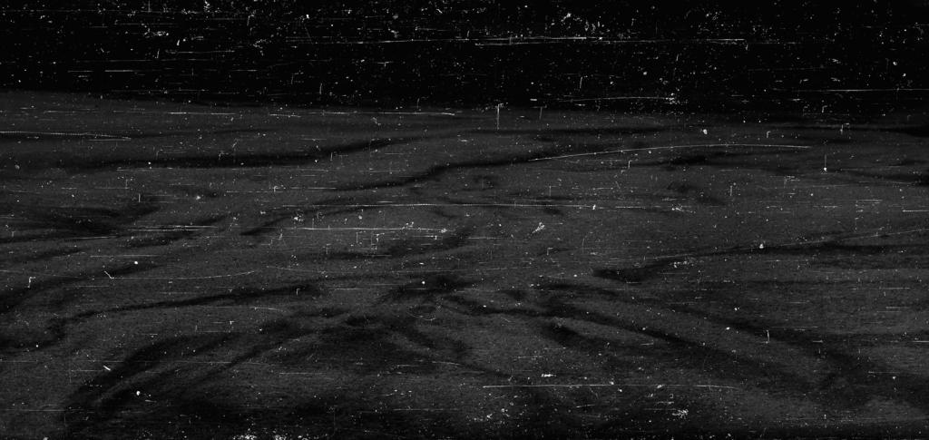 """paisagem#02"", 2014, Microfilm printed on cotton paper, 100 cm x 422 cm"